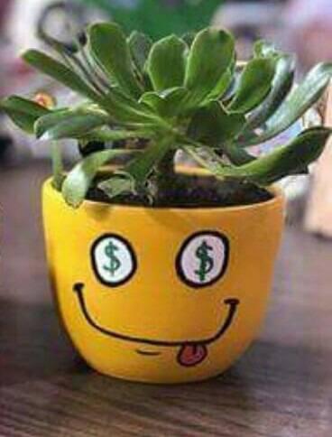 Maceta Emoji Pintada A Mano Con Planta