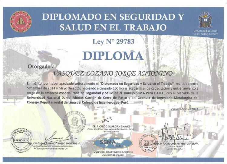 JEFE DE SEGURIDAD/BRIGADISTA 2 DIPLOMADOS EN SEGURIDAD Y SIG