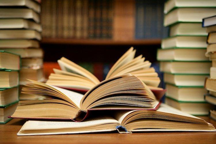 LIBROS PLAN LECTOR EN ESPAÑOL E INGLES Y OTROS.