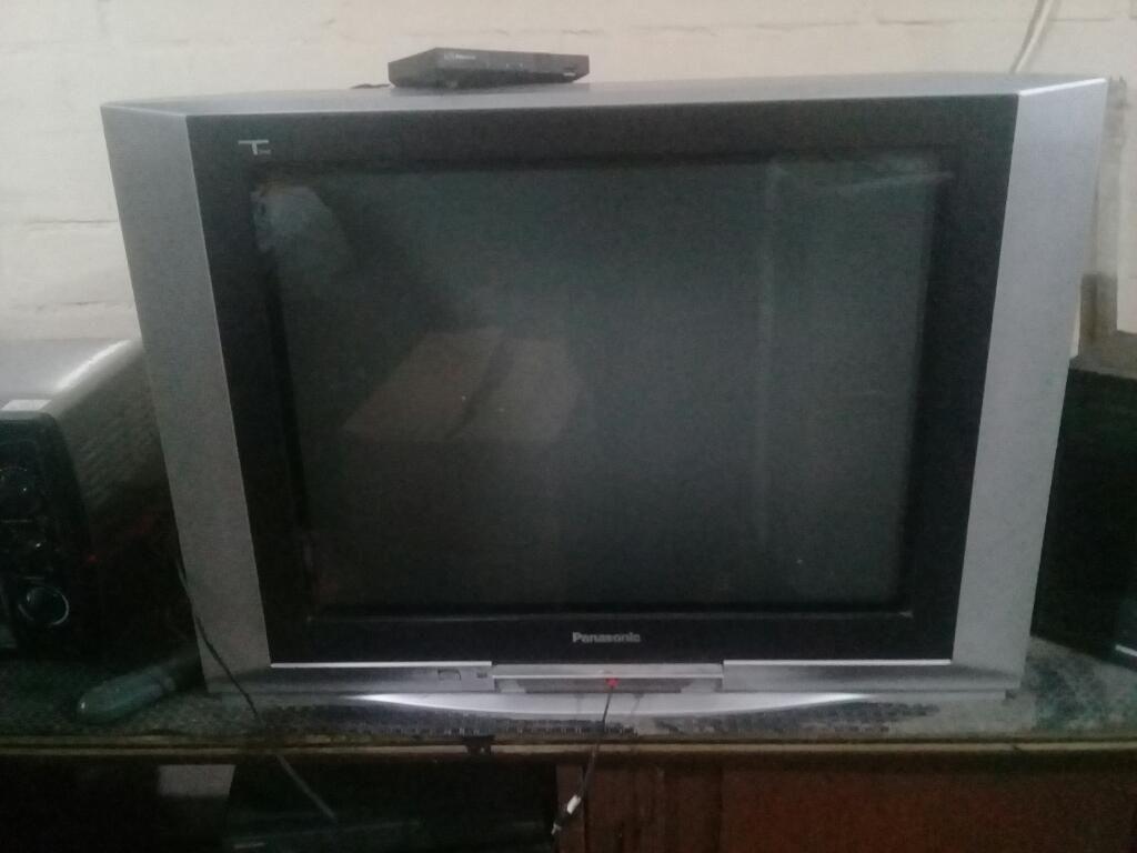 Remato Televisor Grande