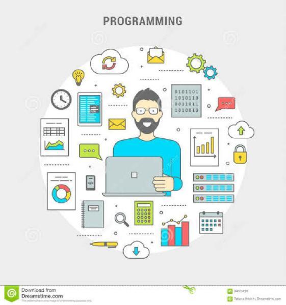 Se Realizan Sistemas Informáticos O Erp
