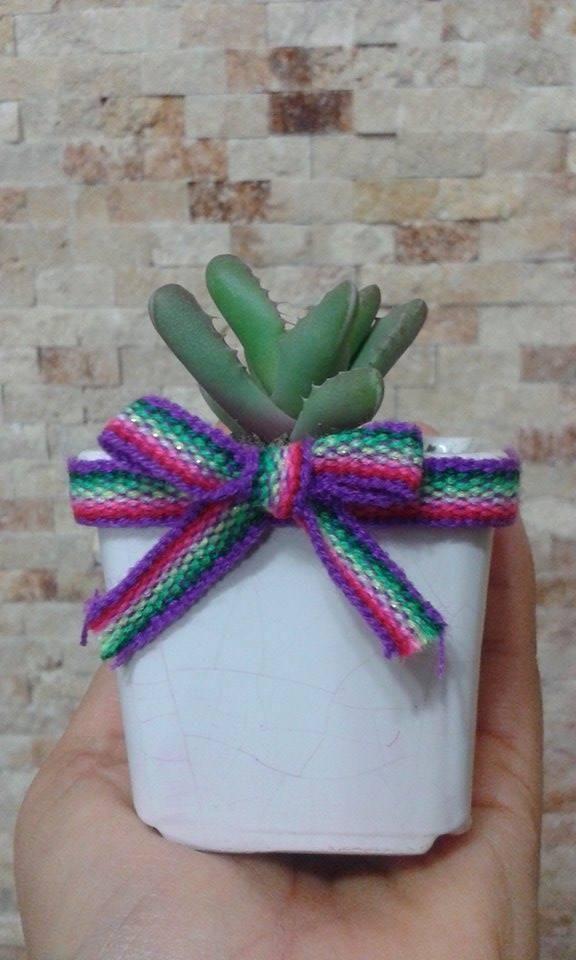 Recuerdos De Bautizo Con Cactus.Recuerdos De Maceta Enlosado Posot Class