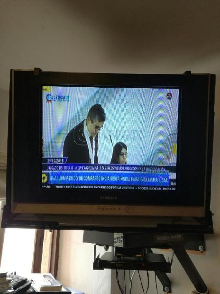 Televisor Samsung 29 Pulgadas Mas Rack