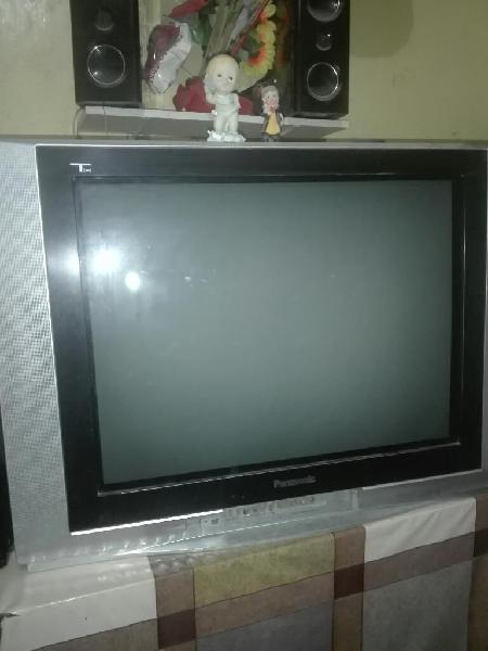 Tv 21 Pulgadas Panasonic Titan Usado