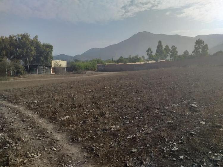 Terreno Pachacamac