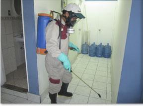 Servicio de fumigacion integral cel 983208665 en Lima