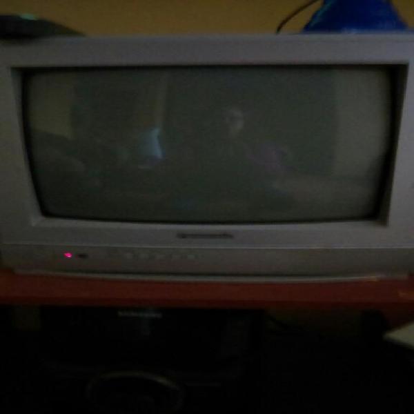 Vendo Televisor Panasonic en Buen Estado