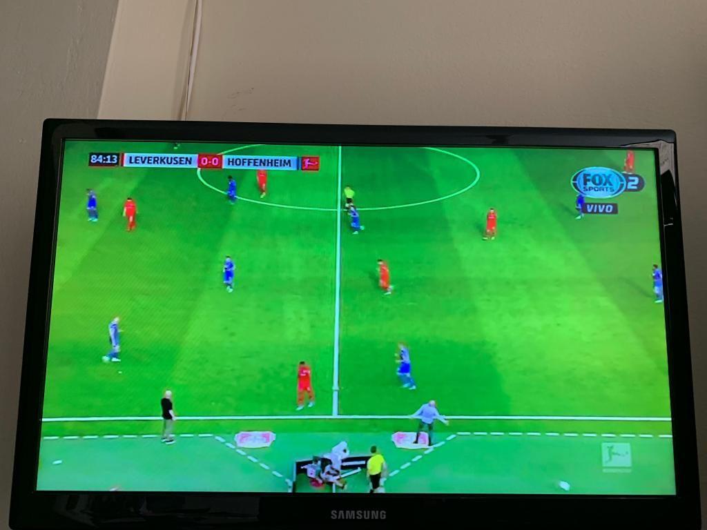 Televisor LCD Samsung 21 pulgadas