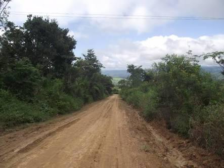 se vende terreno de 20600 m2 con produccion de cacao