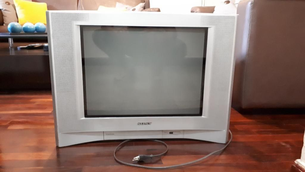 Tv Sony Trinitron de 21 Pulgadas a Color