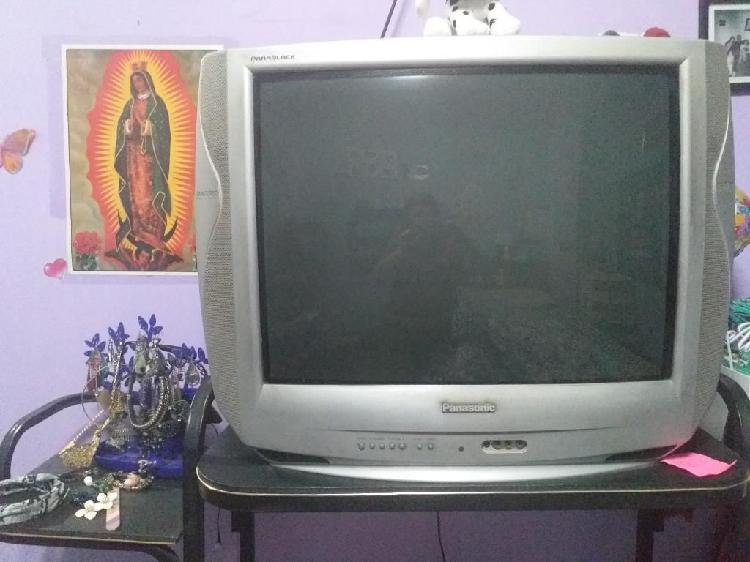 Tv Panasonic 29 Pulgadas panablack
