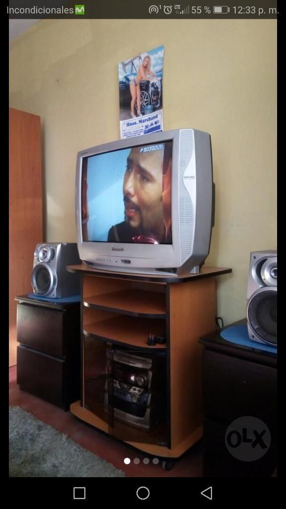Tv Panaturbo 29 Pulgadas Perfecto