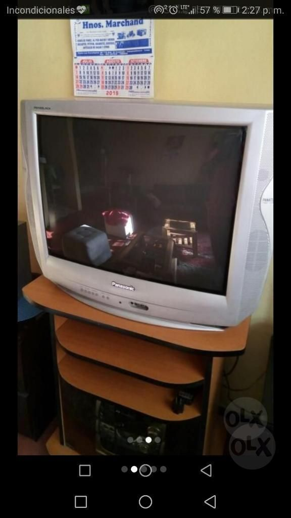 Tv Panasonic 29 Pulgadas Perfecto