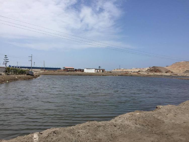 Terreno de Playa Ubicado en Playa Lobos $15,000
