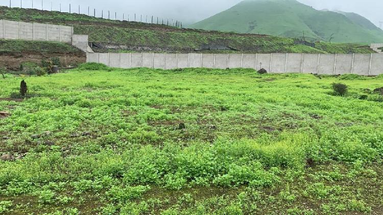 Excelente Terreno Para Casa de Campo en Pachacamac