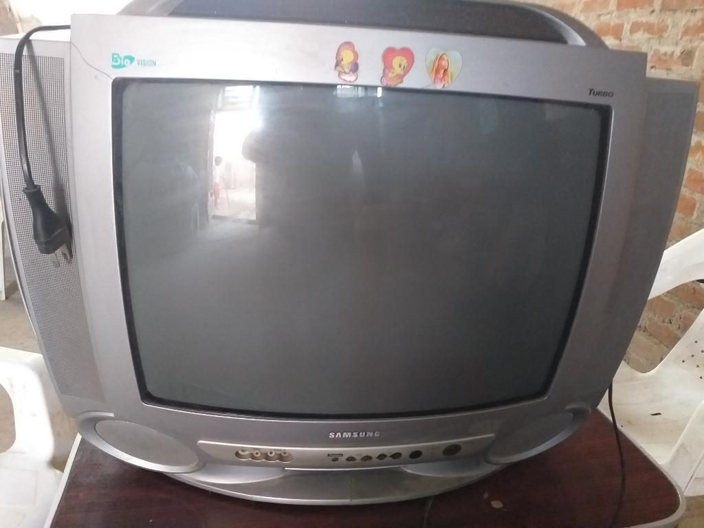 Vendo Televisor Samsung