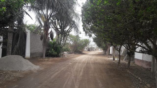 Venta de Terreno en Pachacamac 6,200 m² Ó 3,100 m² Cada