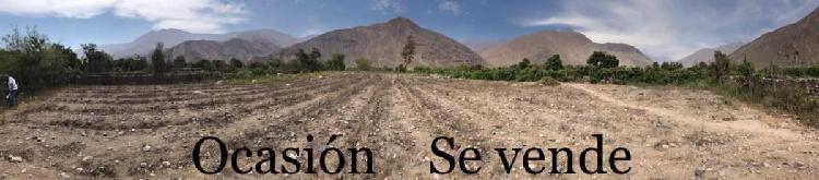 Oportunidad de Inversión Venta de Terreno Productivo/cerca