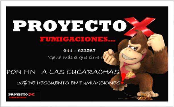 Servicios De Fumigacion Proyecto X Especialistas En Plagas